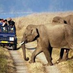 Top 10 eco-tours in India